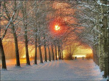 Winter van Ben Hell