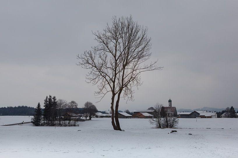 Winter in de Allgäu van Leanne lovink