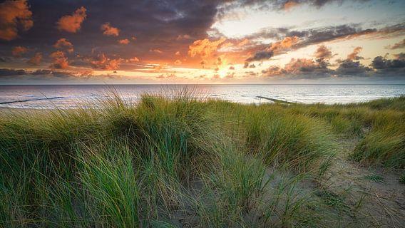de duinen en de Noordzee tijdens de zonsondergang