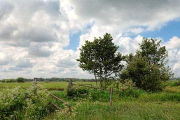 Landschap Lucaswolde Groningen van R Smallenbroek