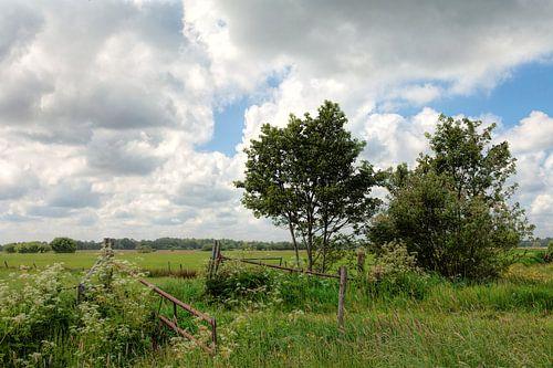 Landschap Lucaswolde Groningen