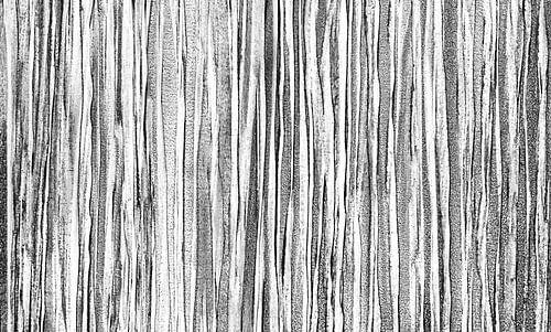 Zwart wit lijnenspel