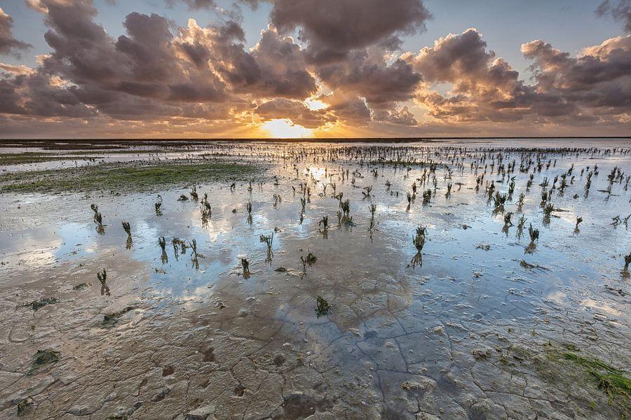 Goud en blauw op de Waddenzee van Ron Buist