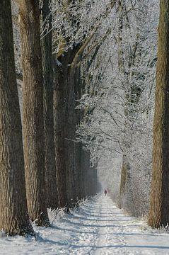 Winter-Spaziergang / Winter-Spaziergang von Henk de Boer