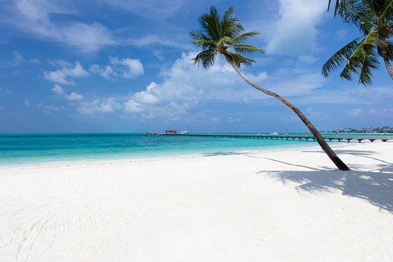 maldives van Tilo Grellmann