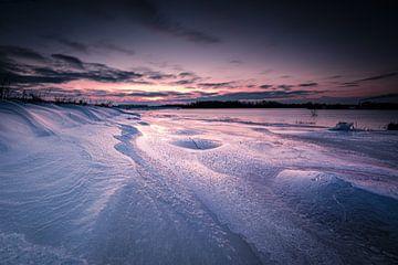 Winter im Biesbosch von Eddy Westdijk