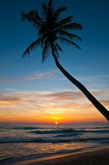 Zonsondergang op het droomstrand
