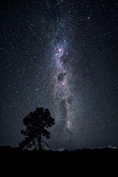 Ciel de nuit sur Markus Gann
