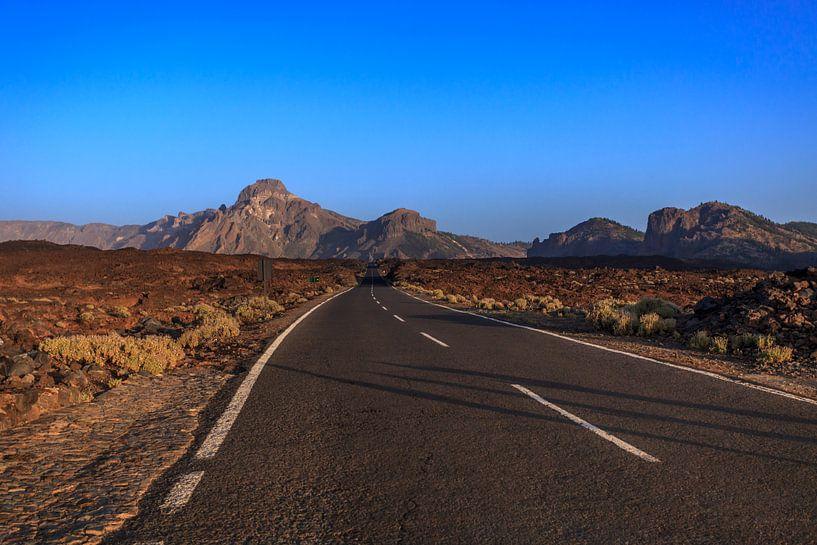 """""""Road to nowhere"""" van Wil de Boer"""