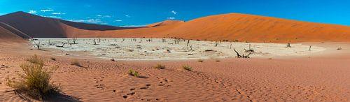 Panoramafoto met een overzicht van de Dode vallei, Namibië