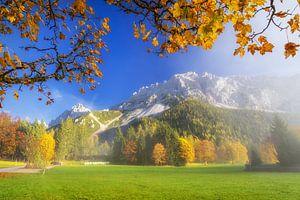 Herfstvol kleuren in de bergen van