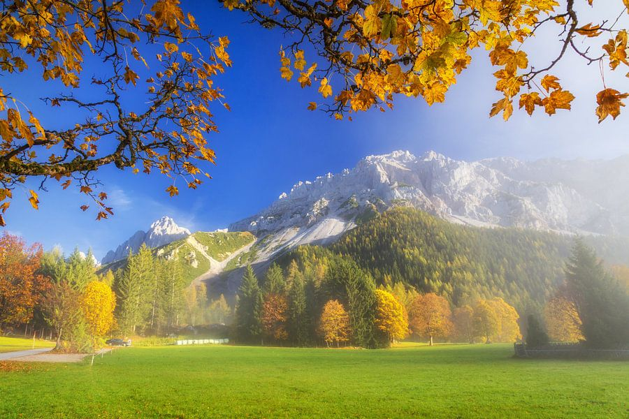 Herfstvol kleuren in de bergen