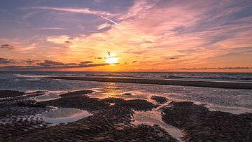 Sonnenuntergang bei Ebbe am Strand von Richard Steenvoorden