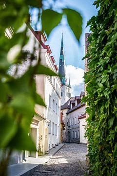 Straat in Tallinn van Ellis Peeters