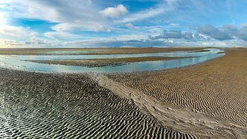 Slenk in de drooggevallen Waddenzee van Jan Huneman