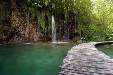 wandelen door het water sur Kristof Ven