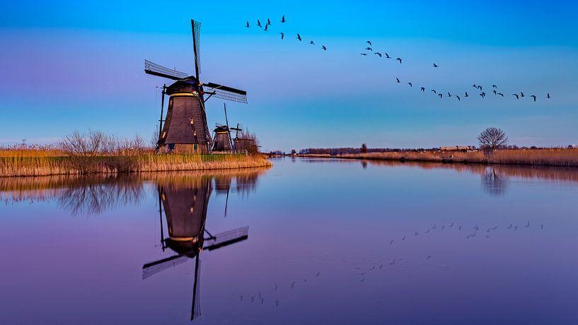 reflection Kinderdijk van Michael van der Burg