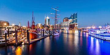 Hamburger Hafen mit der Elbphilharmonie in Hamburg von Werner Dieterich