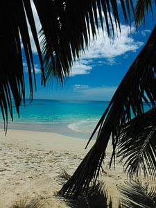 Anse Lazio - seychellen
