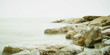 De Opaalkust von Rene van Dam