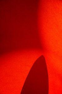 Hotel Carpet von Henri Berlize