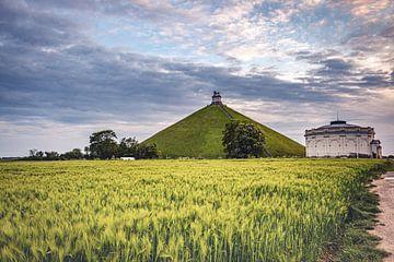 Löwe von Waterloo in grüner Landschaft von Daan Duvillier