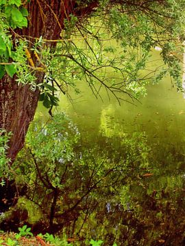 Am Fluß I