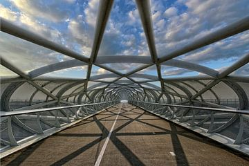 die Netkous, Rotterdam, Fahrradbrücke über die A15 von Tilly Meijer