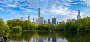 Central Park in New York in de lente