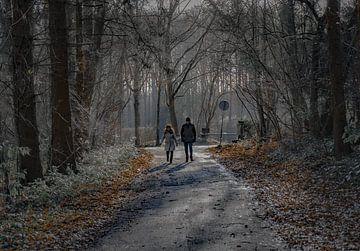 Auf dem Weg in den Wald von Arash Mahdawi Nader
