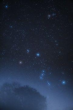 Orion über dem Nebelwald von Bastis photos