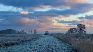Winterse zonsopkomst van Willemke de Bruin