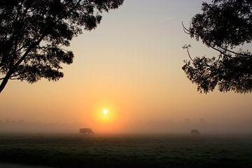 Mistige zonsopkomst van Stephan Neven