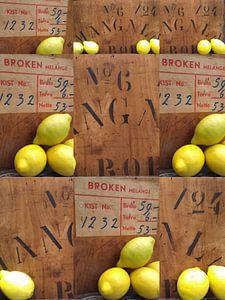 Wenn das Leben dir Zitronen reicht...