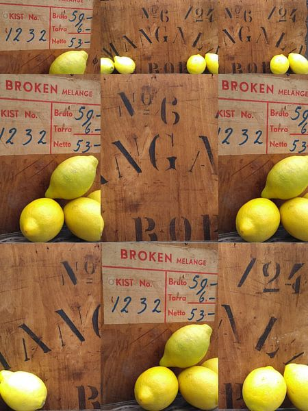 When life hands you lemons... van Susan Stiletti
