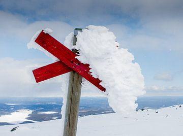 Andrea gefrorenes Kreuz von Hamperium Photography