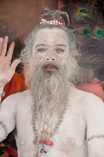 Guru van Dray van Beeck