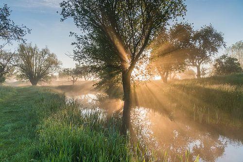 Gouden licht tijdens een magische ochtend op het Werk aan de Groeneweg 1