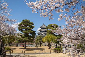 Burg Matsumoto von Marcel Alsemgeest