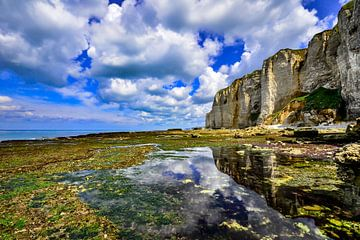 De schitterende krijtrosten van Normandië van Fred van Bergeijk