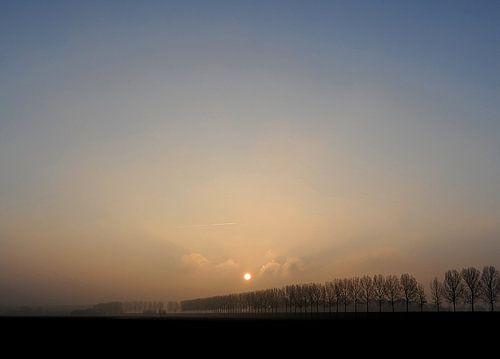 Een hele koude ochtend van Aline van Weert