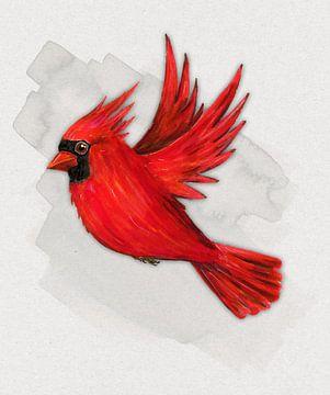 Vliegende rode kardinaal van Bianca Wisseloo