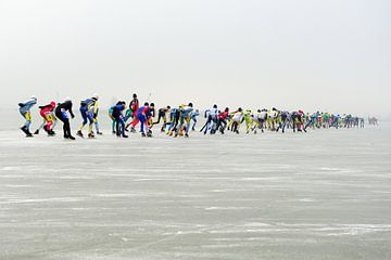 Eislaufen auf den Oostvaardersplassen von Merijn van der Vliet