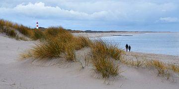 Winterwandeling aan de Noordzee van Bodo Balzer