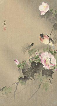 Vogel en rups van Ohara Koson