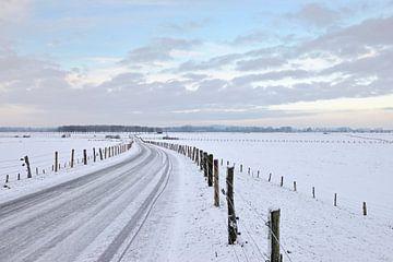 Winterstimmung, Blick über die Bislicher Insel, weite Wiesenlandschaft am Niederrhein, Nordrhein-Wes von wunderbare Erde