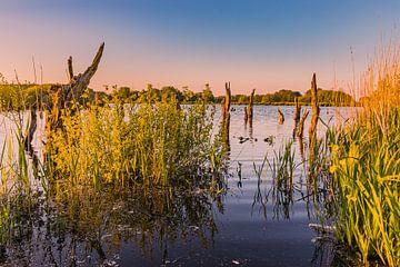 Zonsondergang in  nationaal park De Alde Feanen