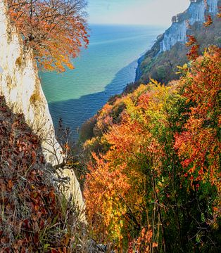 Am Königsstuhl, Nationalpark Jasmund von GH Foto & Artdesign