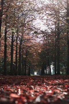 Wandelaars in de herfst van Talitha Blok