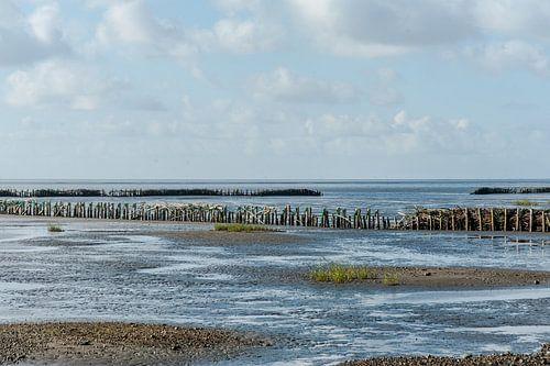 Rijsdammen in de deense waddenzee